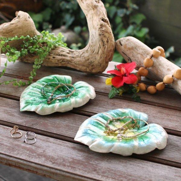 画像1: カピストレイ モンステラリーフ 貝殻 インテリア雑貨 アクセサリートレイ 小物入れ 会計皿 ハワアイアン雑貨 (1)